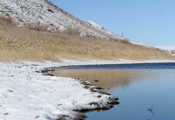 ماهیهای دریاچه بزنگان