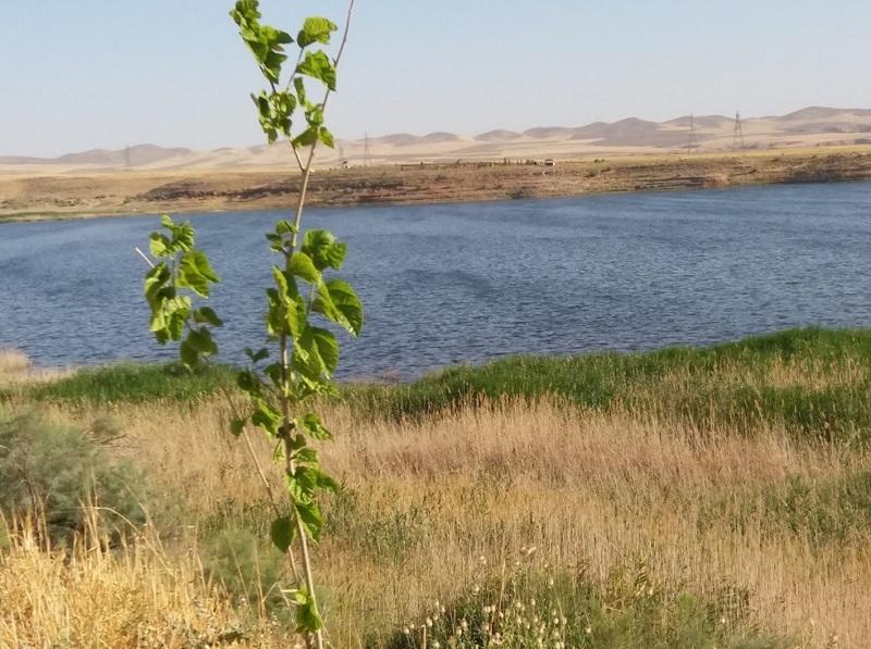 عکسهای دریاچه بزنگان,ماهی دریاچه بزنگان,ماهیگیری در دریاچه بزنگان