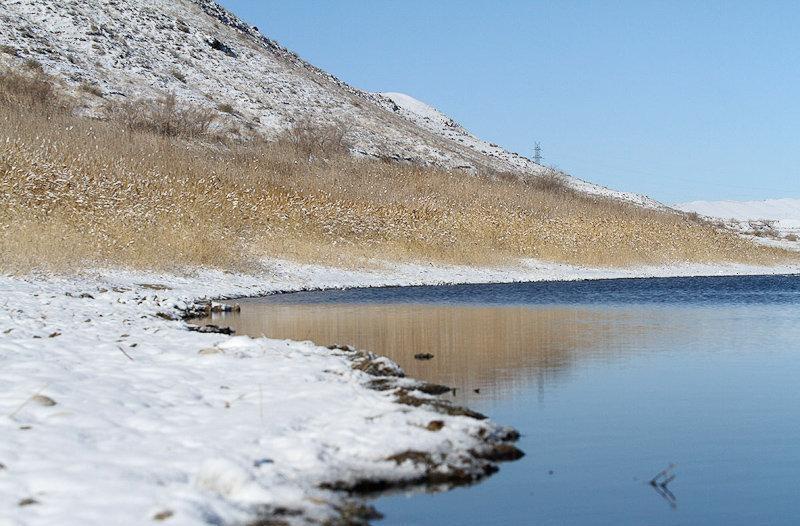 بزنگان سرخس,پرندگان دریاچه بزنگان,دریاچه بزنگان