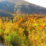 گزارش – روستای دهبار مشهد