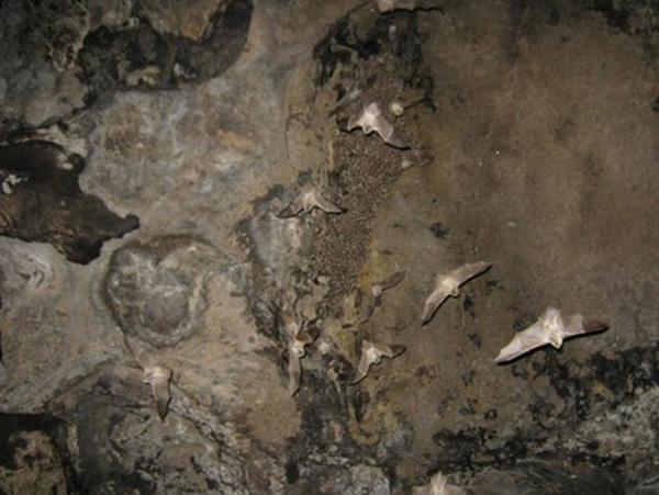 غار مزدوران در مشهد,غار مزدوران سرخس