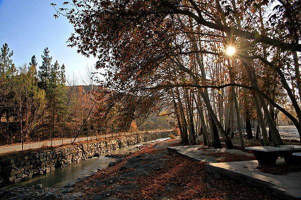 پارک جنگلی وکیل آباد مشهد,پارک وکیل آباد,پارک وکیل آباد در مشهد