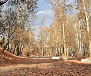 آدرس پارک وکیل آباد مشهد,پارک جنگلی,پارک جنگلی وکیل آباد