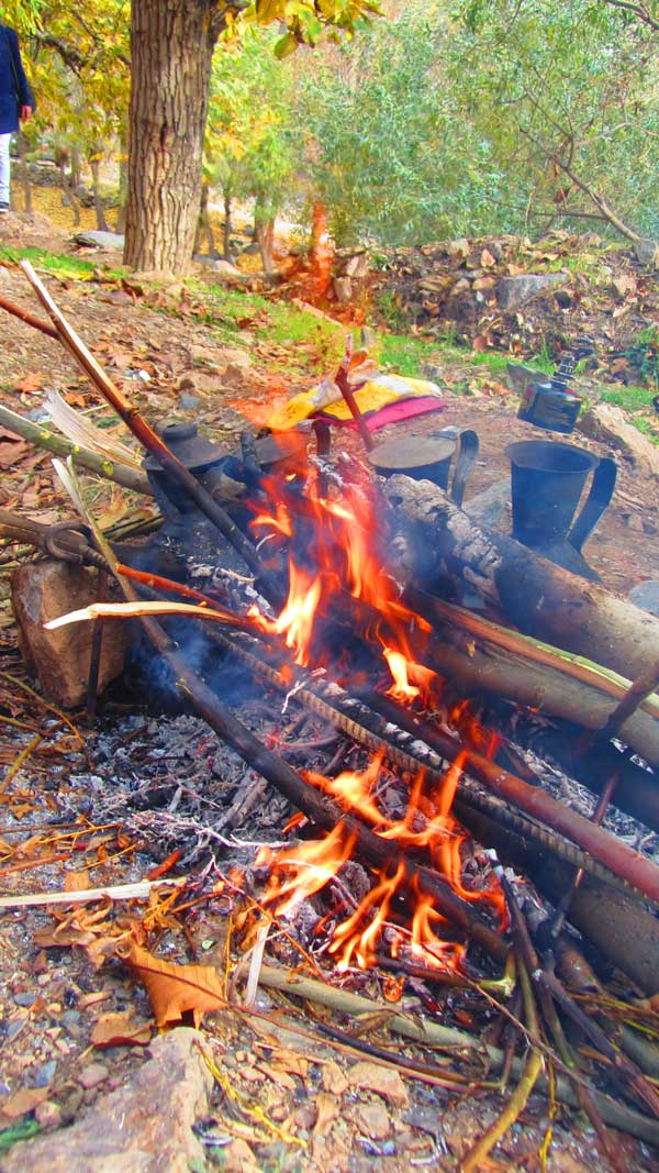 چای کوهی در روستا,خوردن جوجه در طبیعت,گزارش برنامه دررود