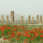 باغ پاسارگاد شیراز