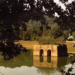 باغ ایرانی,باغ عباس آباد,باغ عباس آباد بهشهر