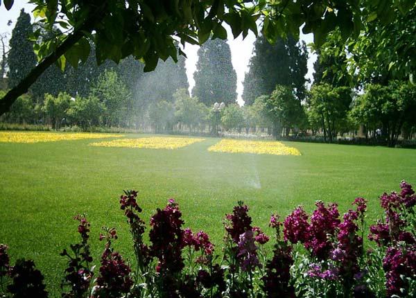 delgosha garden1 باغ دلگشای شیراز