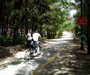 آدرس پارک چیتگر,پارک تهران,پارک جنگلی چیتگر