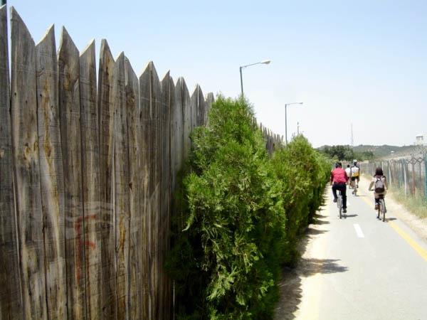پارک چیتگر,پارک چیتگر دوچرخه سواری,دریاچه پارک چیتگر تهران