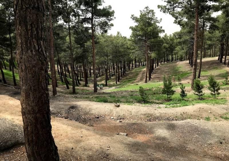 آدرس پارک چیتگر,آدرس پارک چیتگر تهران,پارك جنگلي چيتگر تهران