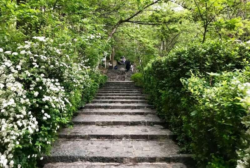 پارک جمشیدیه کجاست,تاریخچه پارک جمشیدیه,عکسهای پارک جمشیدیه تهران
