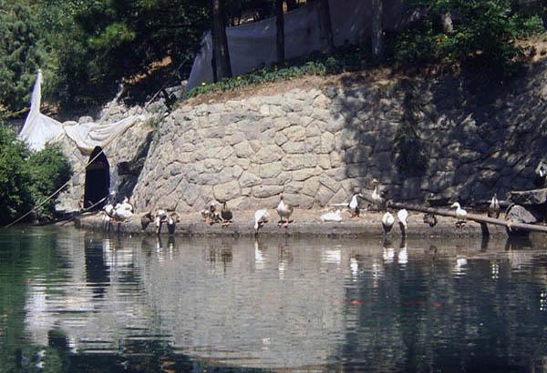 پارک تهران,پارک جمشیدیه,تاریخچه پارک جمشیدیه