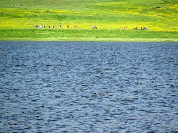 دریاچه نئور,عکس دریاچه نئور,ماهیگیری در دریاچه نئور