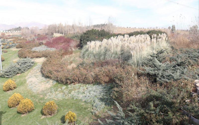 مساحت پارک پردیسان تهران