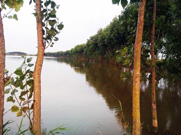 balandoon-sarandoon-pond1