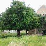 مقبره شجاع الدین خورشید خرم آباد