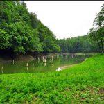 آدرس دریاچه میانشه,دریاچه چورت,دریاچه چورت مازندران