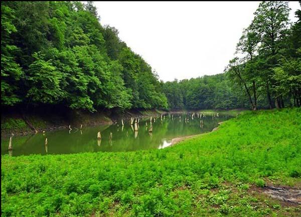 دریاچه میانشه,دریاچه میانشه چورت,ماهیگیری در دریاچه میانشه