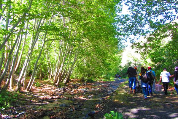 طبیعت زیبا و پیاده روی با کوله های سنگین