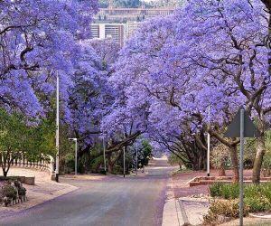 پرتوریا آفریقای جنوبی,جاذبه های پرتوریا,جاذبه های توریستی پرتوریا