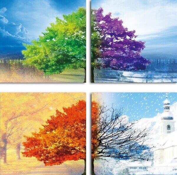 seasons