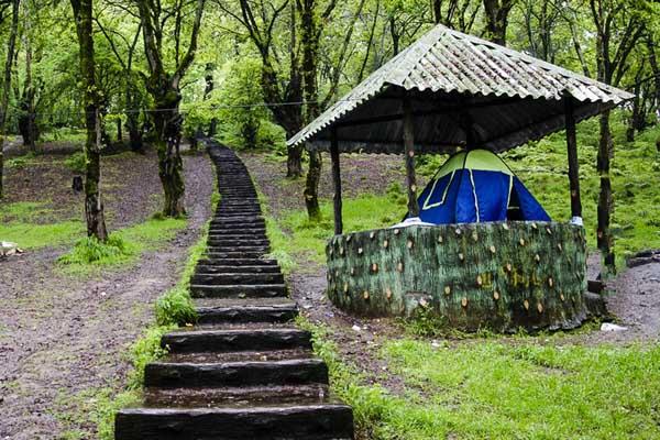 پارک شهید زارع,پارک شهید زارع ساری,عکس پارک جنگلی