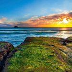 جاذبه های گردشگری اوکلند نیوزلند