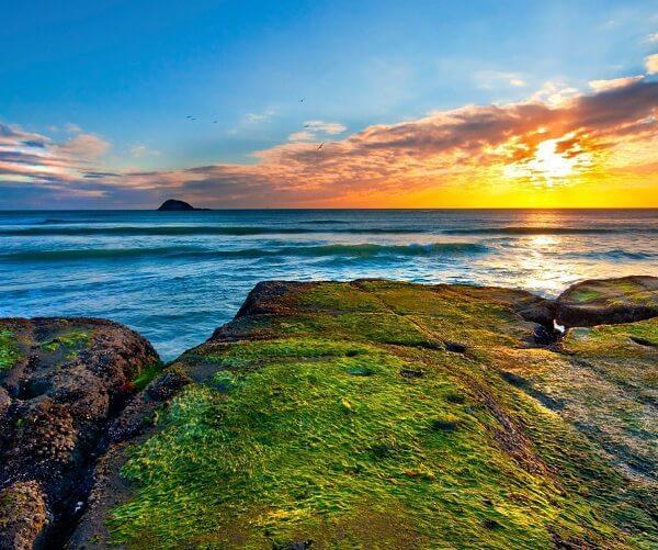 Auckland-New-Zealand-