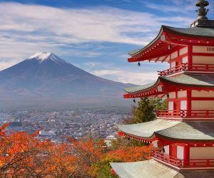 توکیو ژاپن,جاذبه گردشگری توکیو,جاذبه های توریستی توکیو