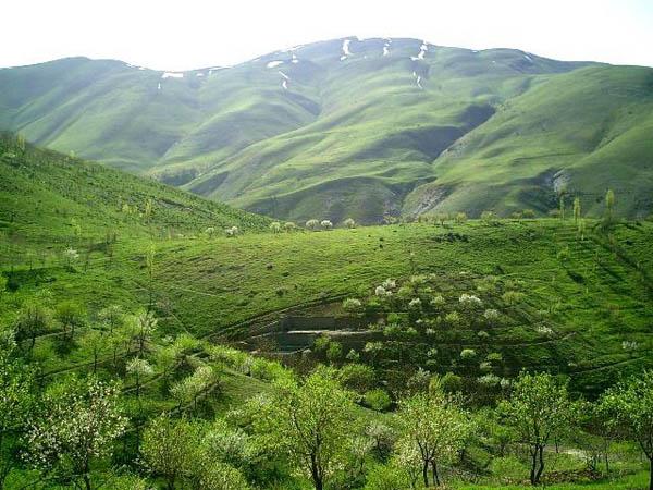 پارک جنگلی آبیدر,پارک جنگلی آبیدر سنندج,عکس کوه آبیدر سنندج