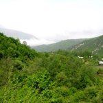منطقه حفاظت شده چلچلی گرگان