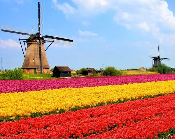 پایتخت هلند,تور هلند,جاذبه هاي گردشگري کشور هلند
