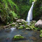 آبشار رنگو,آبشار رنگو گرگان,جنگل رنگو