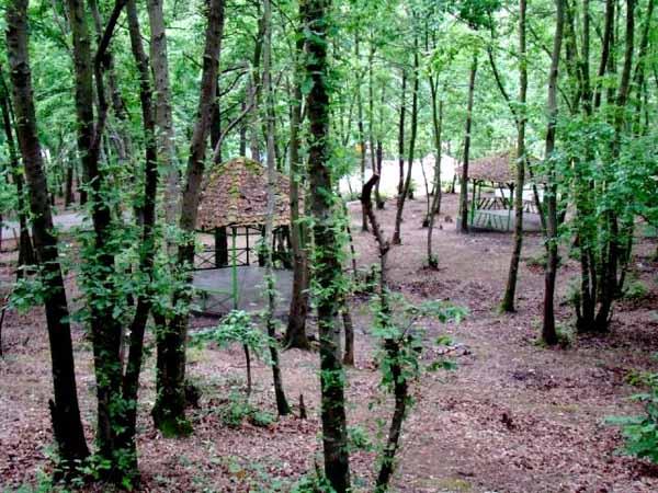 عکس پارک جنگلی سراوان
