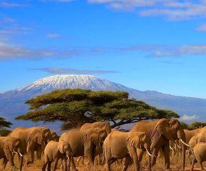 پایتخت تانزانیا,جاذبه های توریستی تانزانیا,جاذبه های کشور تانزانیا