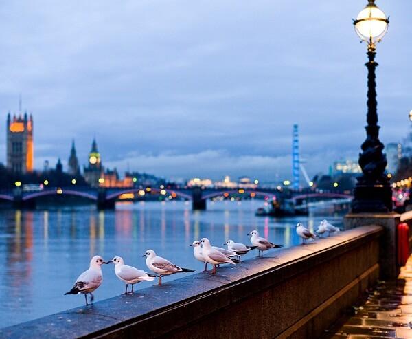 جاذبه های دیدنی لندن,جاذبه های گردشگری لندن,جاذبه های لندن