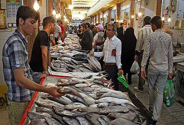 آدرس بازار ماهی فروشان بوشهر,بازار ماهی بوشهر,بازار ماهی فروشان