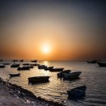 جزایر استان بوشهر,جزایر بوشهر,جزیره بوشهر
