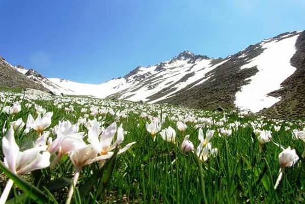 مسیر صعود به قله الوند,مسیر صعود به قله الوند همدان