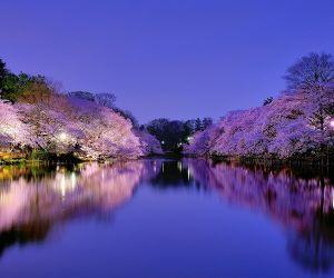 اوساکا ژاپن,تور اوساکا,جاذبه های اوساکا