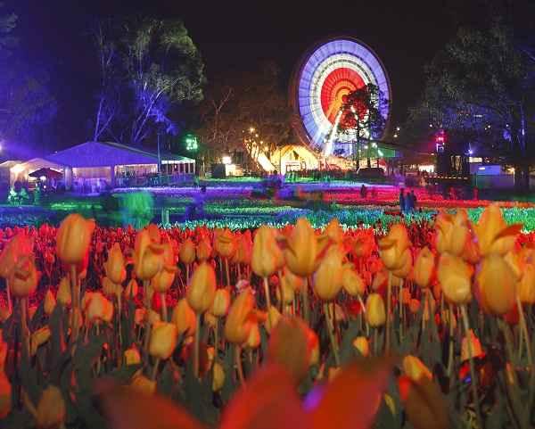 floriade-nightfest