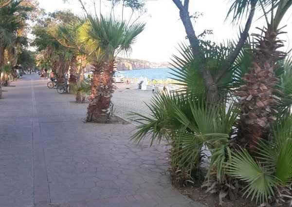 beach-park11