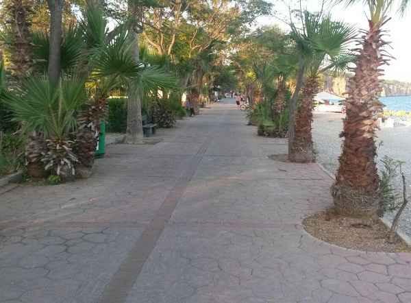 beach-park12