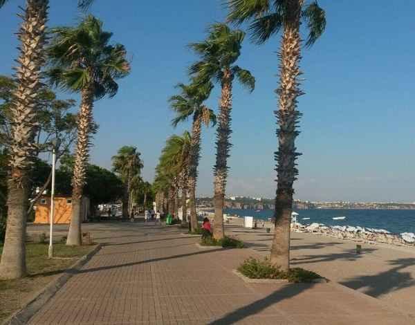 beach-park25
