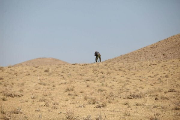 منطقه حفاظت شده باشگل,منطقه حفاظت شده باشگل در قزوین