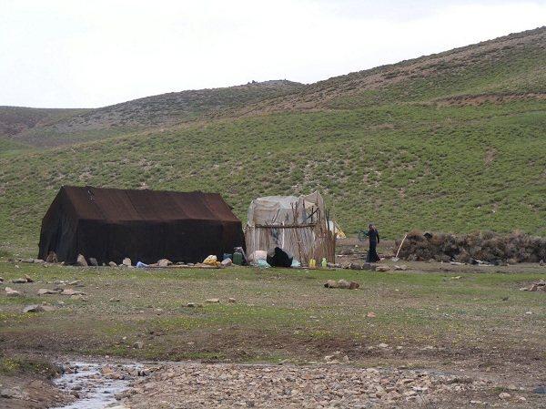 hanza-kerman-10