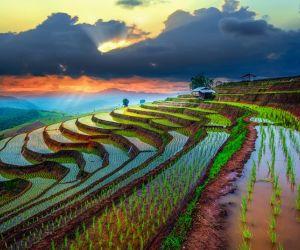 پایتخت ویتنام,پایتخت ویتنام کجاست؟,تور ویتنام