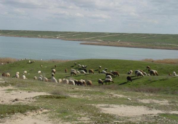 alagol-lake-4