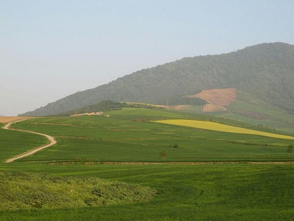 آوج قزوین,جاذبه های گردشگری و طبیعی قزوین,حیات وحش آوج