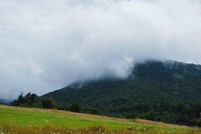 تور جنگل ابر شاهرود,جاذبه های گردشگری سمنان,جنگل ابر در شاهرود